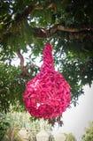 Nid d'oiseau de lampe sur l'arbre Images libres de droits