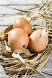 Nid de Pâques, oeufs en paille Image stock