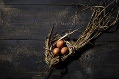 Nid de Pâques, oeufs en paille Image libre de droits