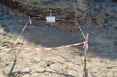 Nid de tortue de mer Photo libre de droits