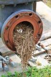 Nid industriel d'oiseau photo libre de droits