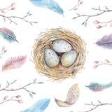 Nid tiré par la main d'oiseau d'art d'aquarelle avec des oeufs, conception de Pâques Image libre de droits