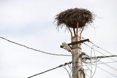 Nid vide des cigognes sur un lampadaire Images libres de droits