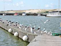 Nida City Marina , Lithuania Royalty Free Stock Photos