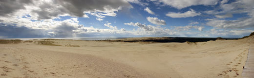 Nida Panorama. A panoramic image of the dunes of the Curonian Peninsula, Lithuania Royalty Free Stock Image