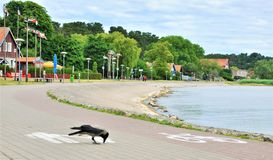 Nida is a settlement in the Curonian Spit, on the southern outskirts of the city of Neringa. stock images