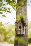 Nidal de madera que cuelga en un árbol fotos de archivo libres de regalías