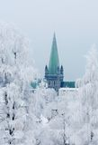 Nidaros Cathedral. The Tower of Nidarosdomen a Cold Winter day. Trondheim, Norway Stock Photography