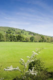 Nidderdale Valley. View across Nidderdale valley in the Yorkshire Dales England Stock Images
