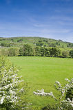 Nidderdale Valley. View across Nidderdale valley in the Yorkshire Dales England Stock Photos