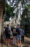 Nidentified turyści przy Ta Prohm świątynią w Angkor Wat Obrazy Royalty Free