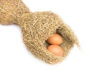Nidi dell'allodola ed uova dell'uccello su fondo bianco Immagini Stock Libere da Diritti