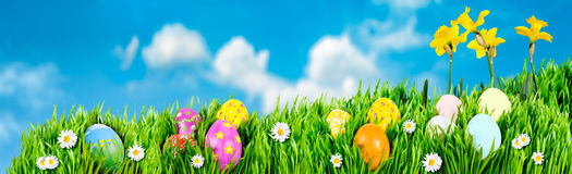 Nidi dell'uovo di Pasqua Fotografie Stock Libere da Diritti