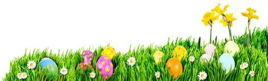 Nidi dell'uovo di Pasqua Fotografia Stock