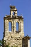 Nidi della cicogna nella vecchia campana Torrelaguna Fotografia Stock