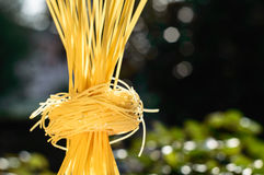 Nidi della pasta e degli spaghetti su luce solare all'aperto Verde e bianco Fotografia Stock