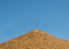 Nido australiano della formica del toro contro cielo blu Immagine Stock
