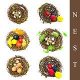 Nido con differenti uova Fotografie Stock