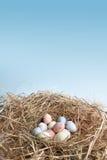 Nido con le uova di Pasqua Fotografia Stock Libera da Diritti
