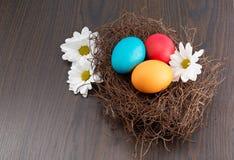 Nido con le uova di Pasqua Variopinte con i fiori immagine stock libera da diritti