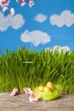 Nido con le uova dorate Fotografia Stock