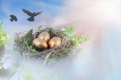 Nido con le uova dorate Fotografia Stock Libera da Diritti