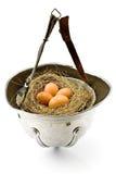 Nido con le uova nel vecchio casco dell'esercito fotografia stock
