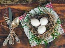 Nido con le uova sul piatto Fotografia Stock Libera da Diritti