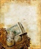 Nido con soldi su una priorità bassa di Grunge Immagine Stock Libera da Diritti