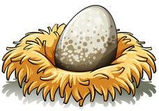 Nido con un uovo Immagini Stock