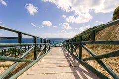 Nido de la tortuga de mar de la playa de Gerakas Fotografía de archivo