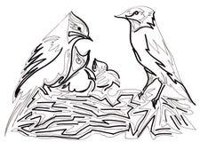 Nido dell'uccello Immagini Stock