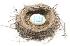 Nido dell'uccello con l'uovo 401K Fotografie Stock Libere da Diritti