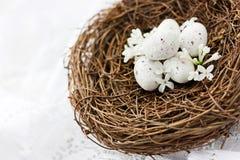 Nido dell'uccello con le piccole uova macchiate bianche Fotografia Stock