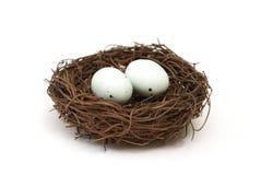 Nido dell'uccello con le uova Immagini Stock