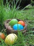 Nido dell'uccello in pieno delle uova di Pasqua che si trovano sul bordo dell'erba immagini stock libere da diritti