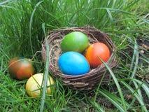 Nido dell'uccello in pieno delle uova di Pasqua che si trovano sul bordo di legno fotografia stock