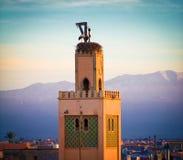 Nido della cicogna sulla moschea, Marocco Immagine Stock Libera da Diritti