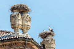 Nido delle cicogne nel castello di Racconigi Fotografie Stock