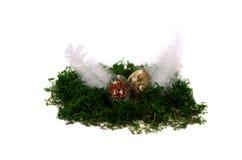 Nido di moos di Pasqua su fondo bianco Fotografia Stock