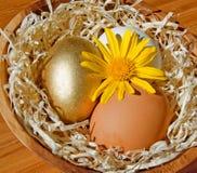 Nido di Pasqua Fotografia Stock