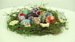 Nido di Pasqua stock footage