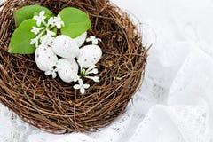 Nido di Pasqua con le piccole uova macchiate bianche Immagine Stock Libera da Diritti