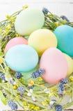 Nido di vimini con le uova di Pasqua Immagini Stock
