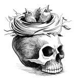 Nido e cranio Fotografia Stock Libera da Diritti