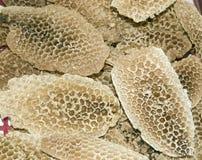 Nids d'abeilles Image stock