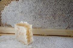 Nids d'abeilles complètement de miel Photographie stock