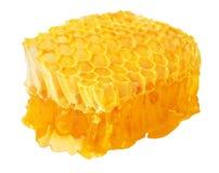 Nids d'abeilles d'isolement sur le blanc Images stock