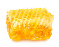 Nids d'abeilles d'isolement sur le blanc Photographie stock libre de droits