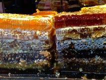 Nids d'abeilles frais Photographie stock libre de droits